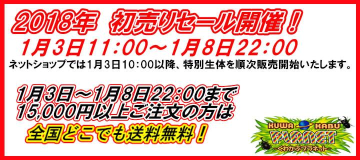 くわプラ ゴールデンウィークスペシャルセール開催!